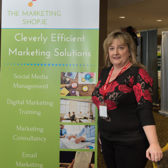 https://www.bizexpo.ie/wp-content/uploads/2018/04/DSC7979-540x540.jpg