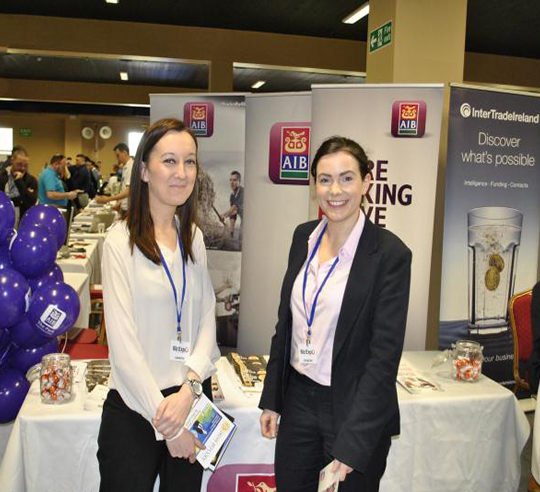 https://www.bizexpo.ie/wp-content/uploads/2019/02/Allied-Irish-Bank-540x492.jpg